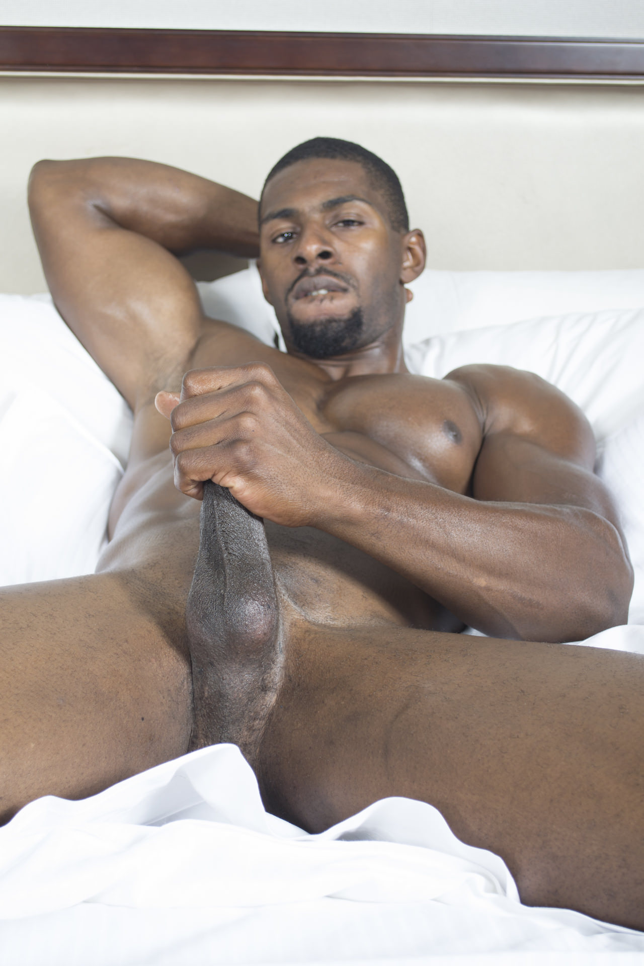 gay black hunk muscle