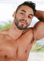 Arad hairy model