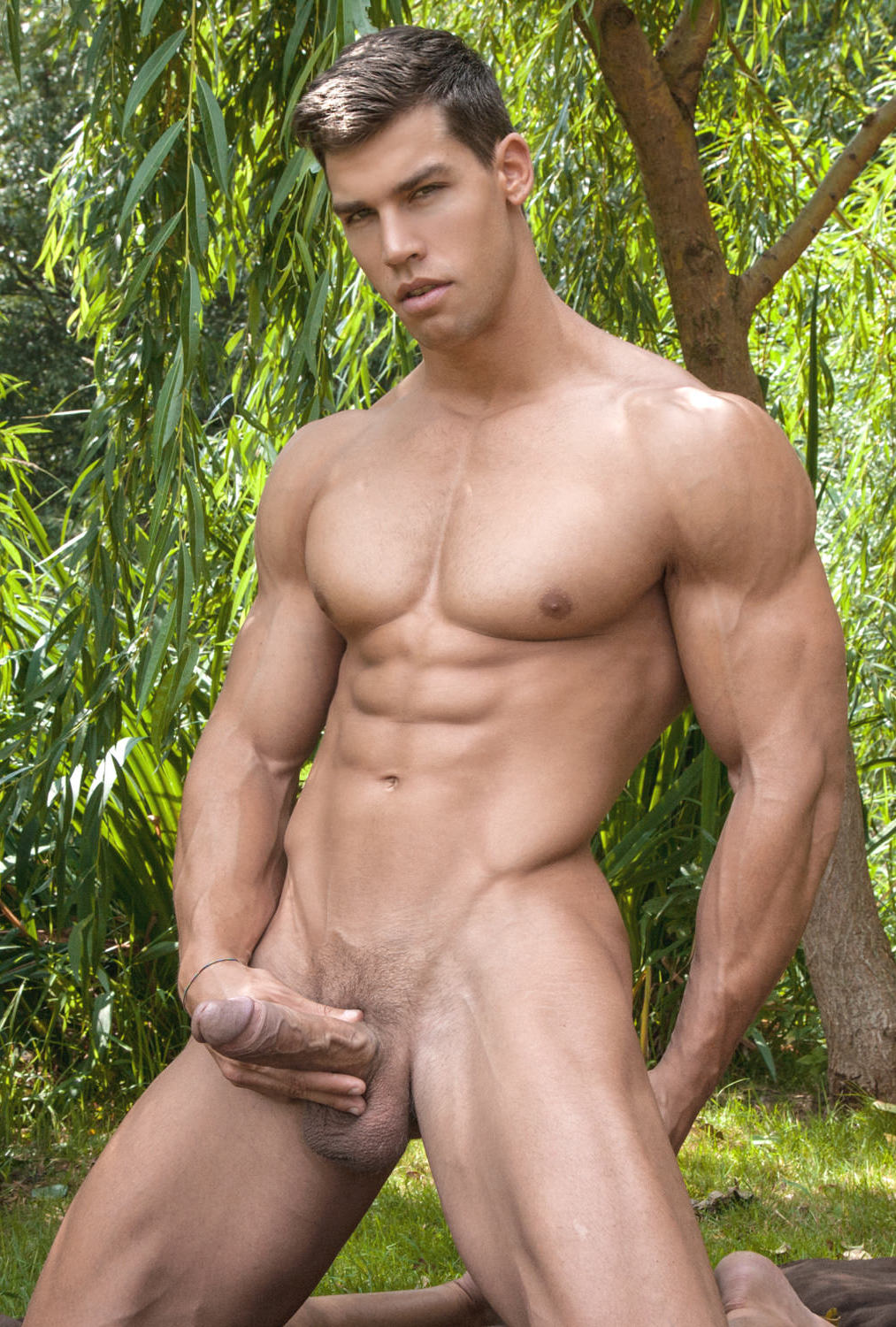 from Solomon gay model gallery