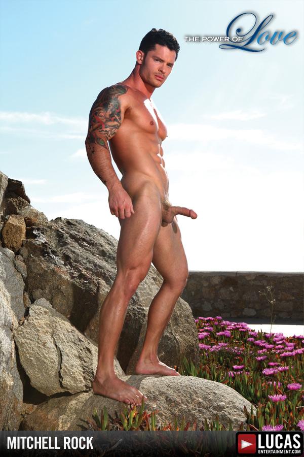 hot porn female bodybuilder gif