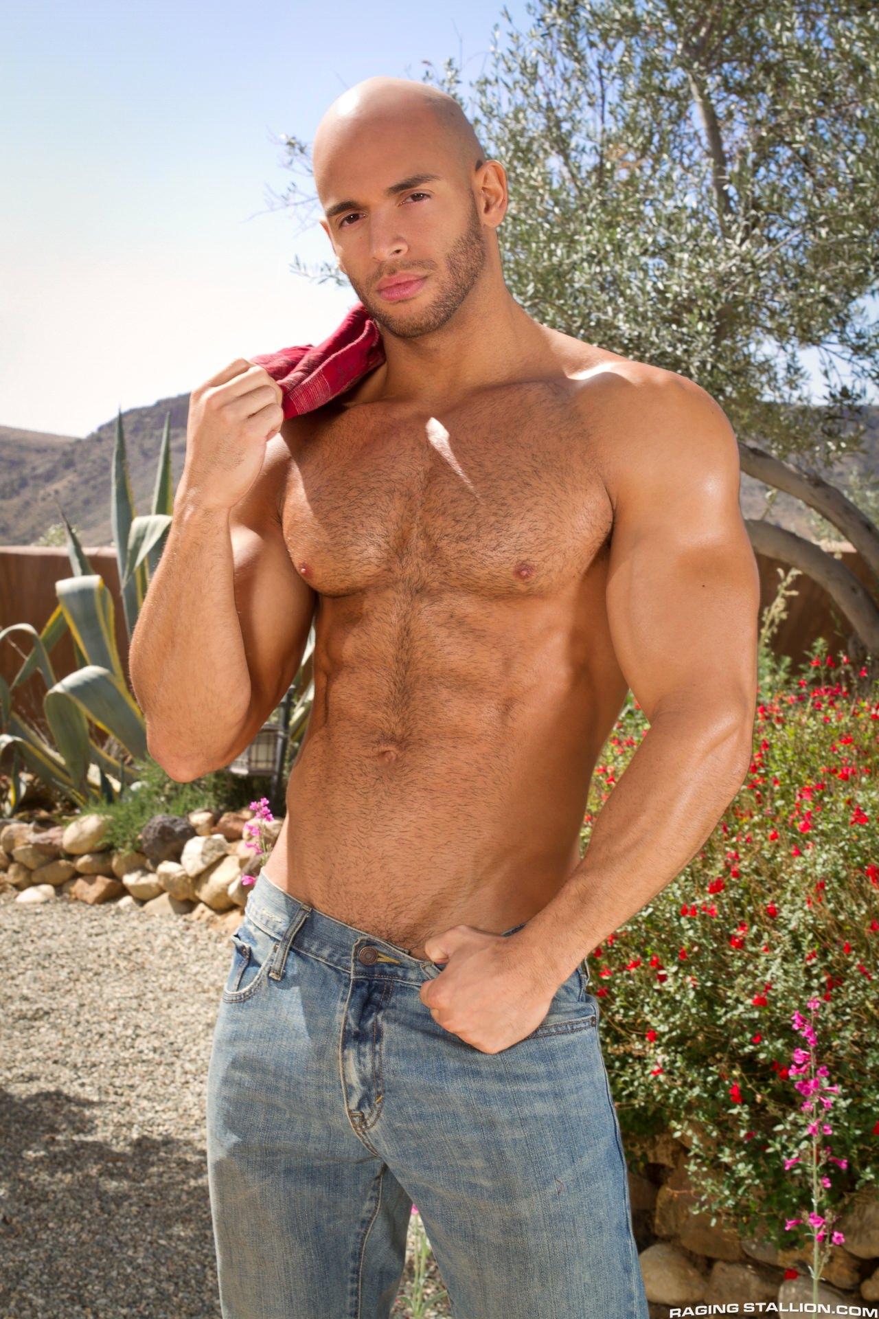 Raging stallion models