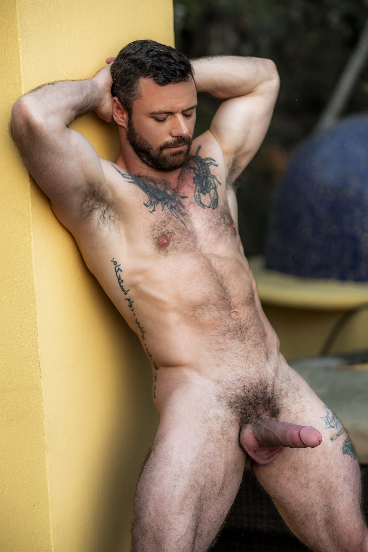 from Ronan gay porn search star