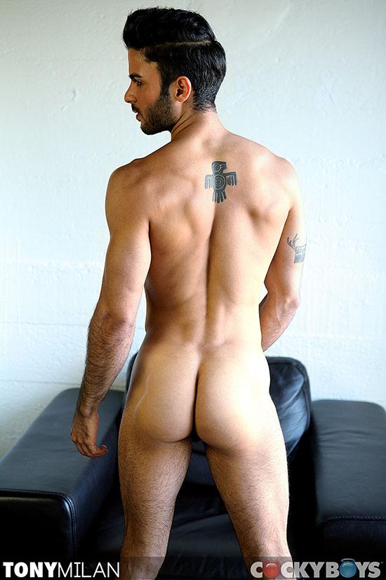 free hairy brazilian nude jpg 422x640