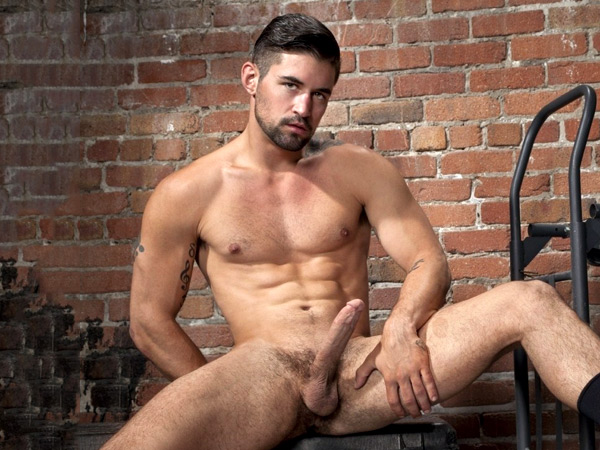 benjamin-godfre-raging-stallion