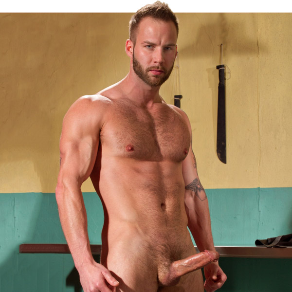 chris_bines_raging_stallion