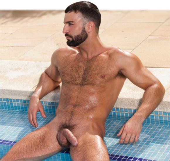 gay sexo gay gay muscle marcelo cabral brasileiro muscle