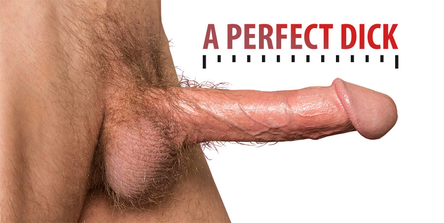 perfect dick