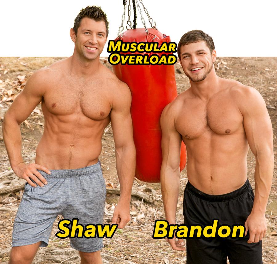seancody-brandon-shaw