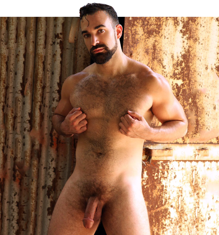 arabian hunk Hector model solo ParagonMen