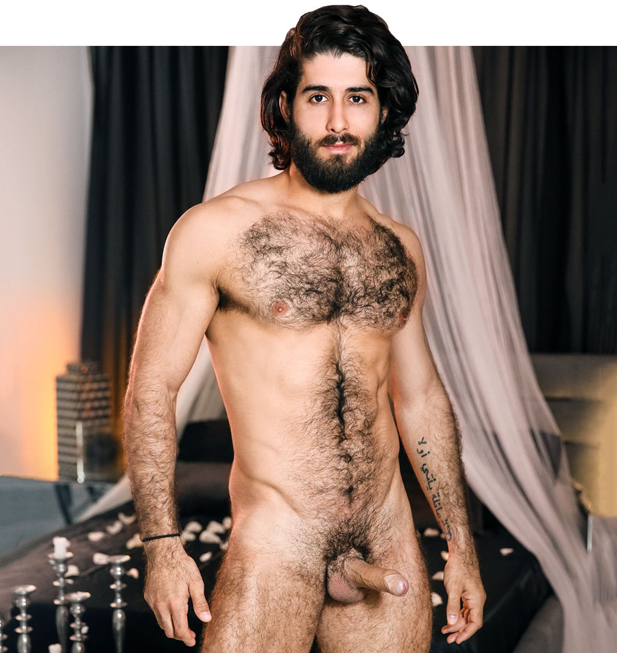 Share your nude sexy guy hairy opinion, you false