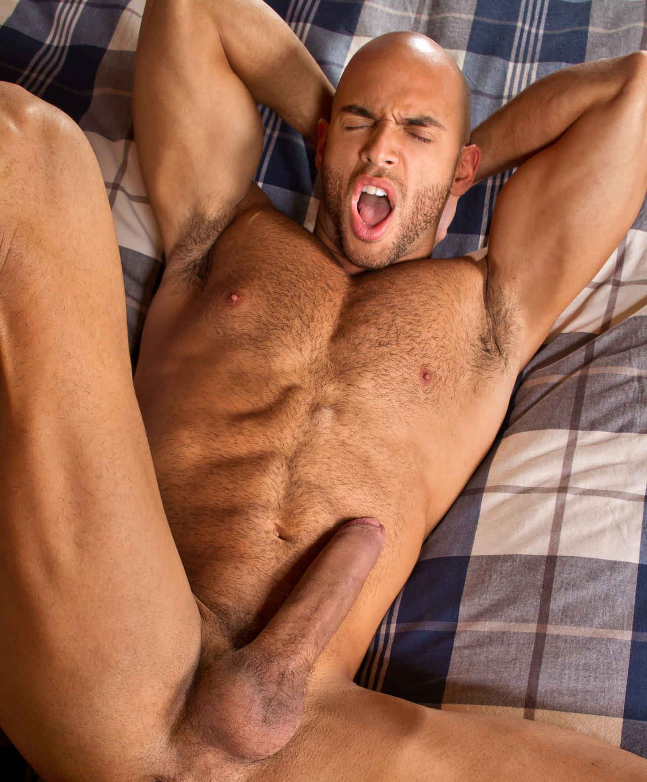 Pictures of peta gay binda