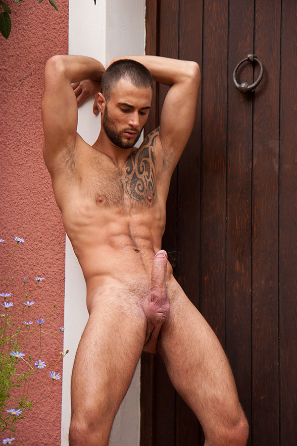 The best male porn-2463