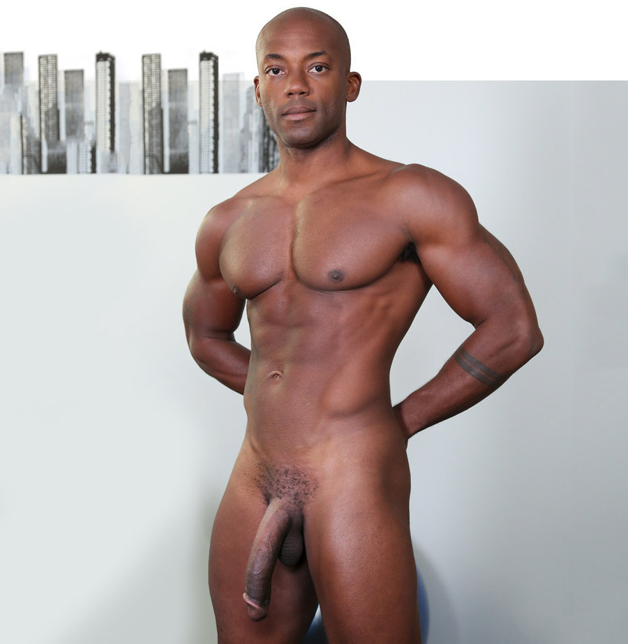 gay hung black men