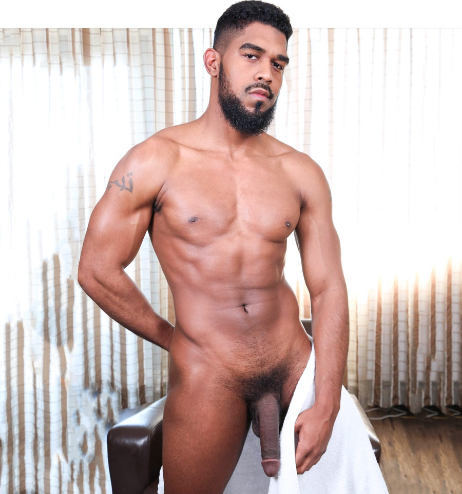 Nude gay male porn star