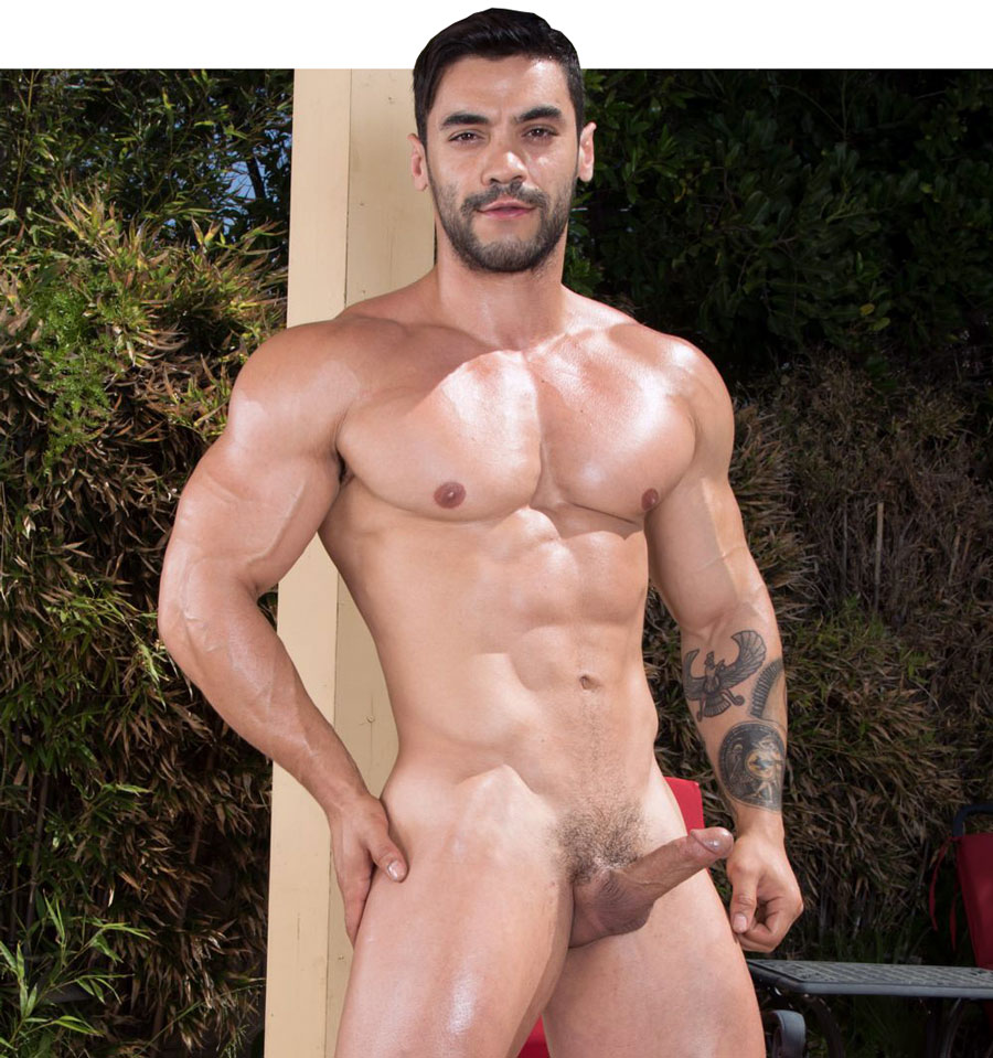 Arad Winwin Porn Videos Bareback sexy bodybuilder arad winwin